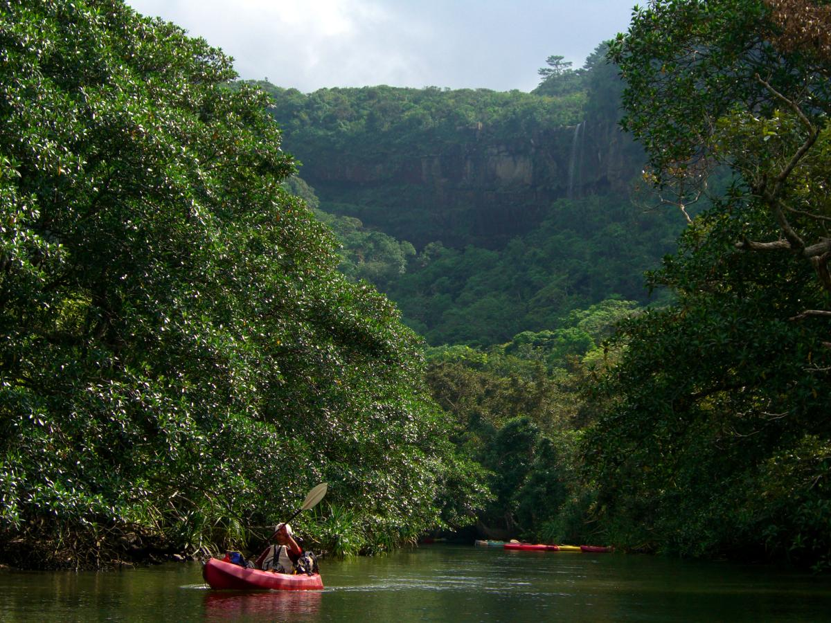 ピナイサーラの滝 (Pinaisara waterfalls) seen from a river in the jungle of 西表島 (Iriomote island, Japan) on 31 October 2008.