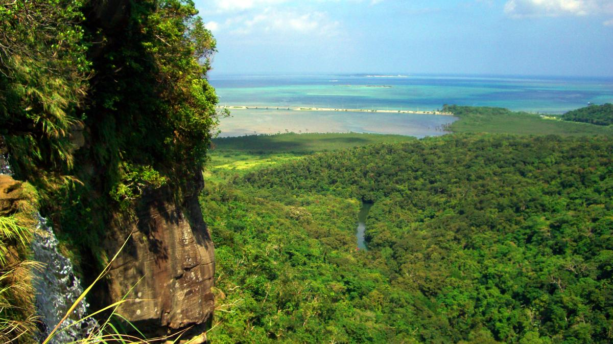ピナイサーラの滝 (Pinaisara waterfalls) above the jungle of 西表島 (Iriomote island, Japan) on 31 October 2008.